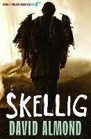 Jacket image for Skellig