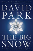 Jacket image for The Big Snow