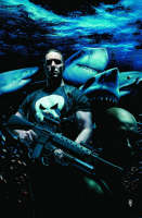 Jacket image for Punisher Max Vol. 3